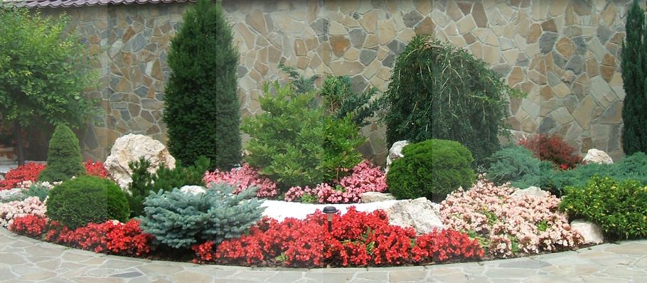 Amenajari gradini Brasov - Aranjamente de arbori, arbusti si flori Brasov